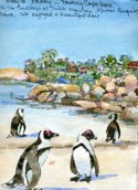 May 13 Capetown African Penquins